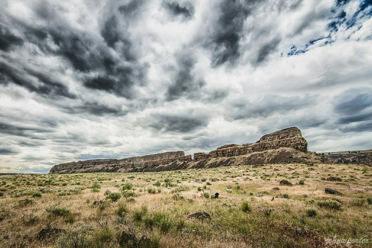 Umatilla Rock holding down the coulee