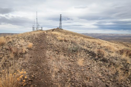 Baldy radio towers
