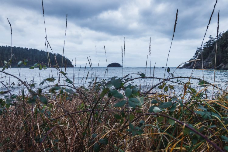 Deception Pass Island from Bowman Bay