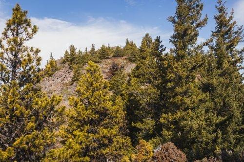 Maynard Peak by Tyler Peak / 靠泰勒峯的梅納德峯