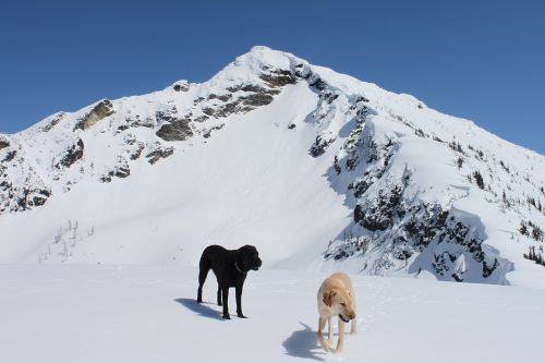 Read more about the article Ruby Mountain by Ross Lake / 靠羅斯湖的紅寶石山