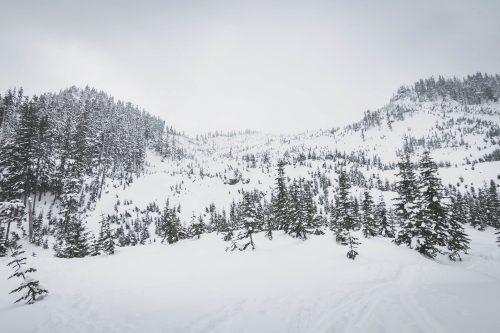 Roaring Ridge by Mount Catherine / 靠凱瑟琳山的咆哮脊