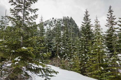 Read more about the article Storm King Mountain 4750 in South Cascades by Mineral / 暴風王山