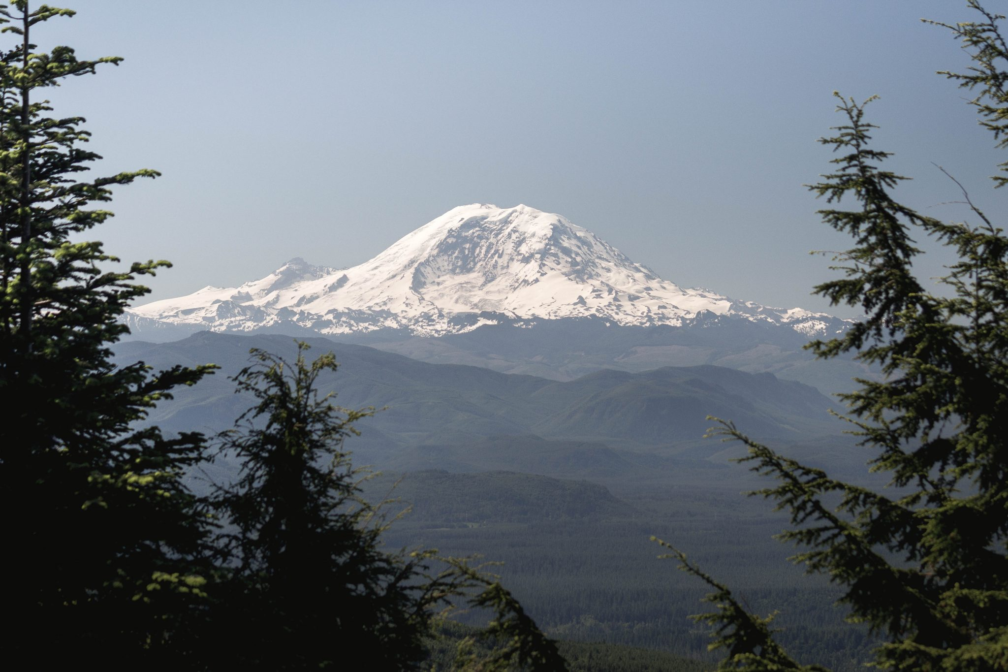 Mount Rainier from East Tiger Mountain