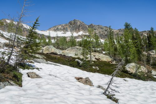 Read more about the article Porcupine Peak by Cutthroat Peak via Rainy Pass + PCT North / 豪豬峯