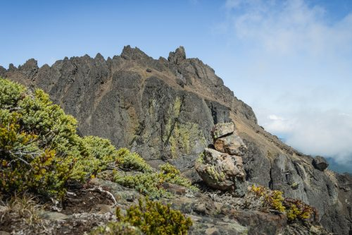 Read more about the article Mount Constance in Olympic Mountains via Lake Constance / 康斯坦絲山